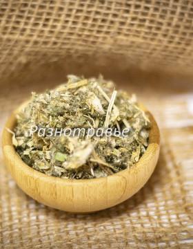 Астрагал шерстистоцветковый, трава
